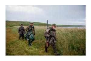 Лицензия на охоту и рыбалку MP Legal Group